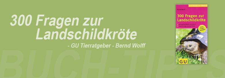 300 Fragen zur Landschildkröte von Bernd Wolff