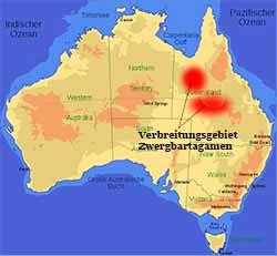 Zwergbartargame - Verbreitungsgebiet in Queensland, Australien