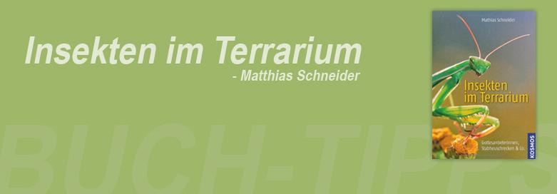 Buch-Tipp: Insekten im Terrarium von Mathias Schneider