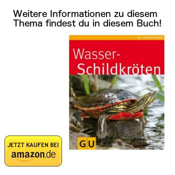 Wasserschildkröten - Buchtipp bei Amazon ansehen.