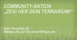 Community-Aktion: Zeig her Dein Terrarium!